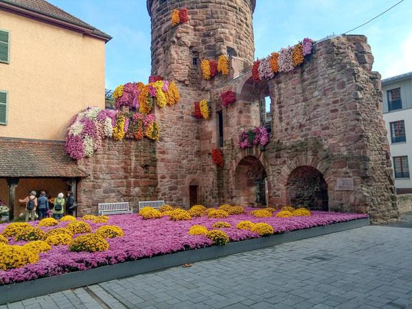 Праздник цветов в немецком городе Лар