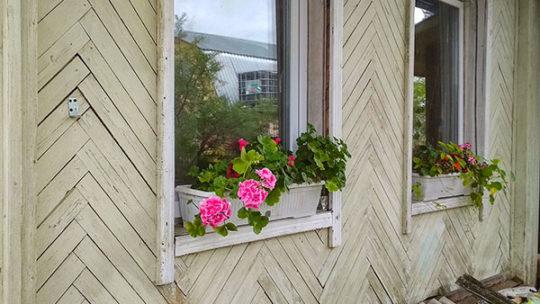 Как вставить пластиковые окна в садовый домик